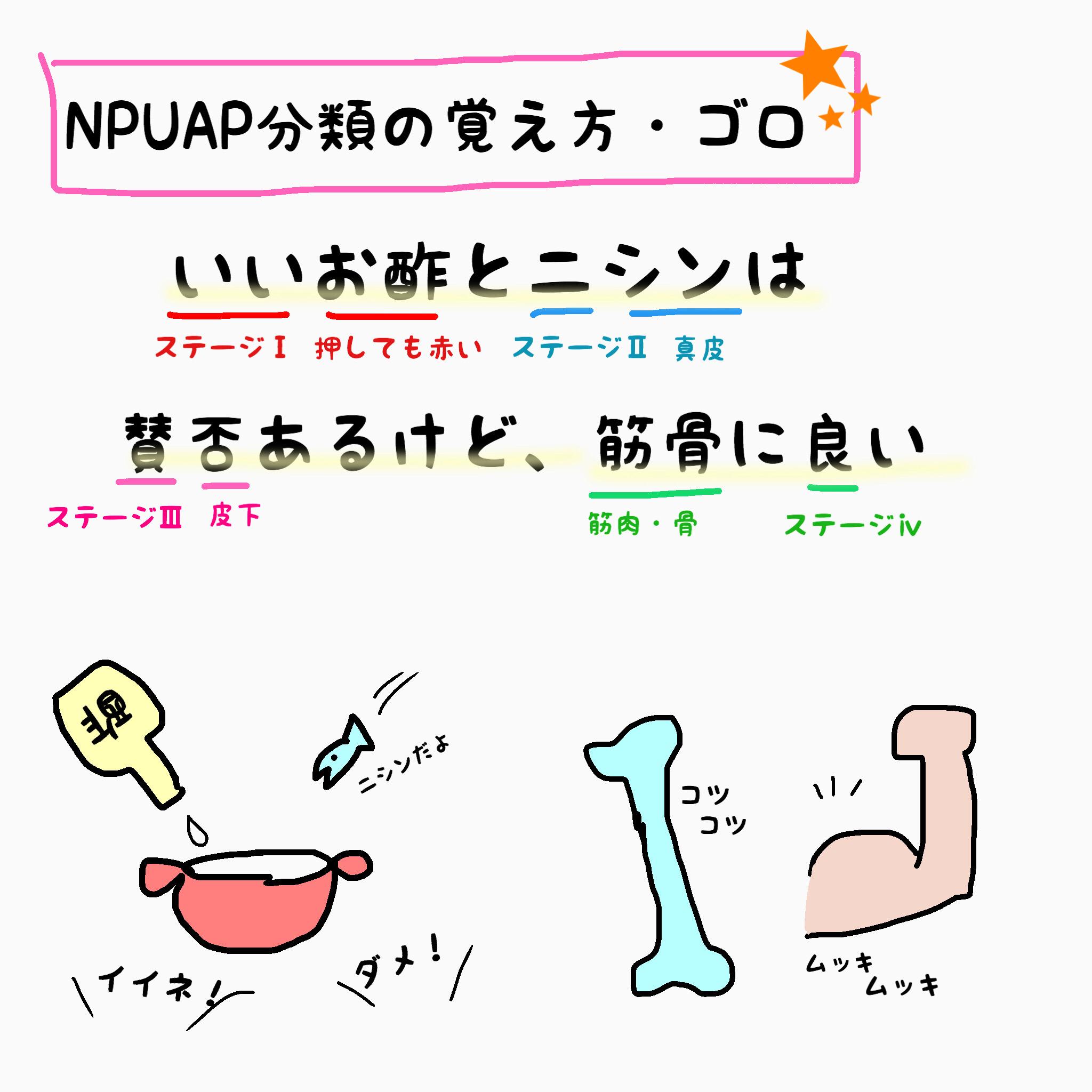 褥瘡NPUAP分類のゴロ暗記