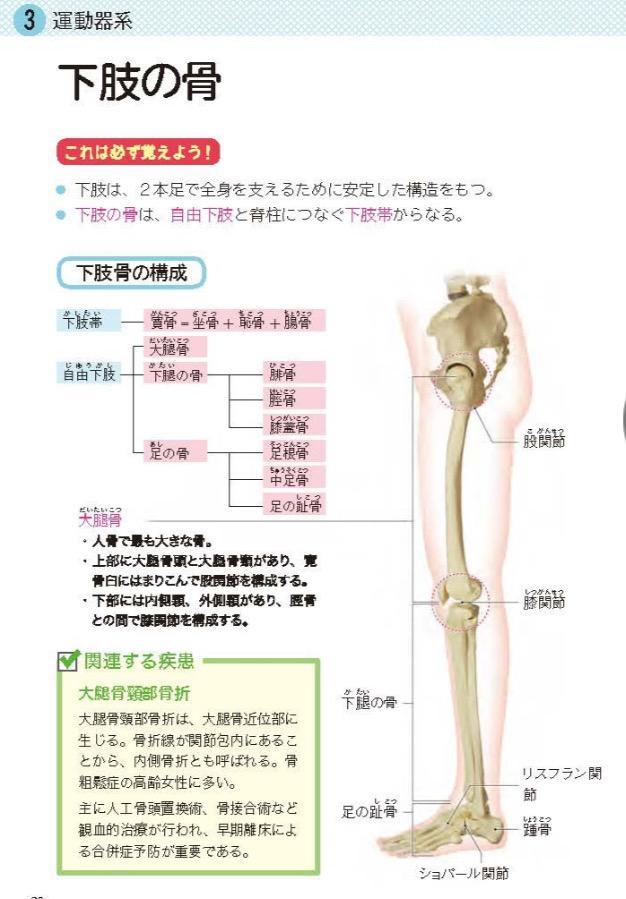 解剖生理学おすすめ参考書