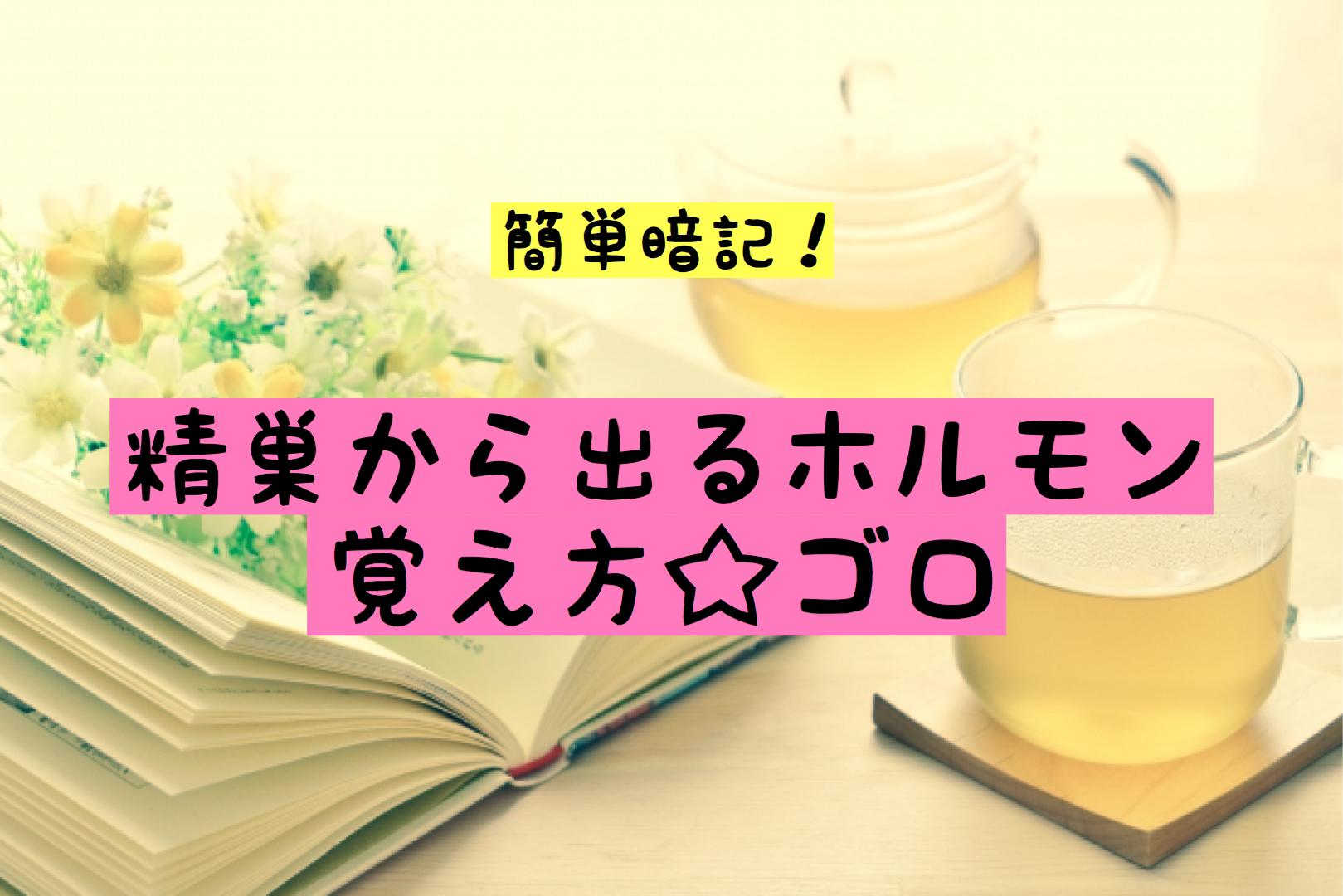 精巣 ホルモン ゴロ 暗記