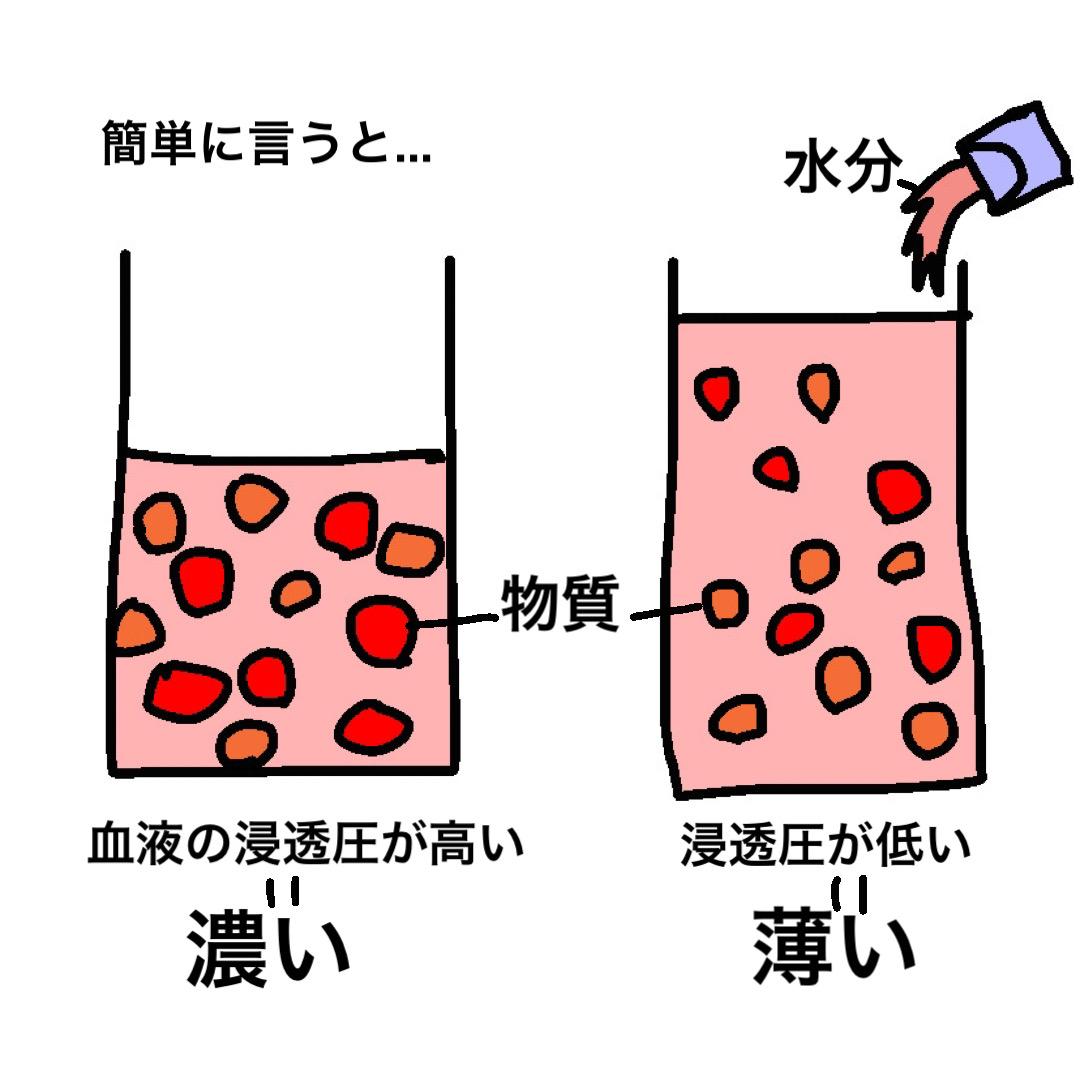 血漿浸透圧 わかりやすい説明 イラスト