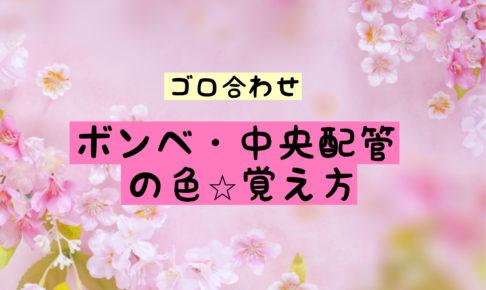 ボンベ 中央配管 色 覚え方